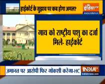 Cow should be declare national animal of India: Allahabad High Court