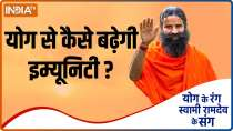 How to strengthen immunity to prevent dengue malaria? Learn remedies from Swami Ramdev