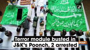 Terror module busted in Jammu and Kashmir's Poonch, 2 arrested