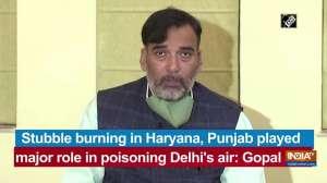 Stubble burning in Haryana, Punjab played major role in poisoning Delhi's air: Gopal Rai