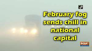 February fog sends chill in national capital