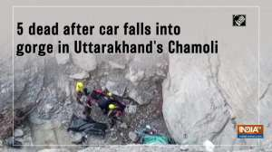 5 dead after car falls into gorge in Uttarakhand's Chamoli