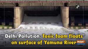 Delhi Pollution: Toxic foam floats on surface of Yamuna River