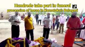 Watch: Hundreds take part in funeral procession of horse in Karnataka's Belagavi