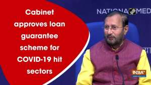 Cabinet approves loan guarantee scheme for COVID-19 hit sectors
