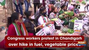 Congress workers protest in Chandigarh over hike in fuel, vegetable prices