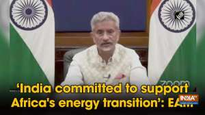 'India committed to support Africa's energy transition': EAM