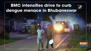 BMC intensifies drive to curb dengue menace in Bhubaneswar