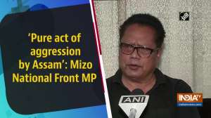 'Pure act of aggression by Assam': Mizo National Front MP