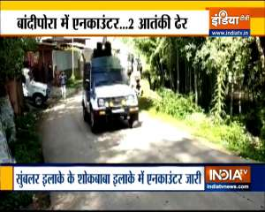 Jammu and Kashmir: Two terrorists killed in encounter with security forces in Bandipora