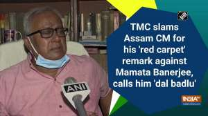TMC slams Assam CM for his 'red carpet' remark against Mamata Banerjee, calls him 'dal badlu'