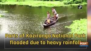 Parts of Kaziranga National Park flooded due to heavy rainfall