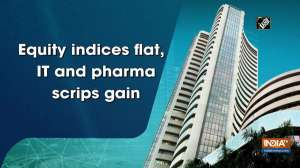 Equity indices flat, IT and pharma scrips gain