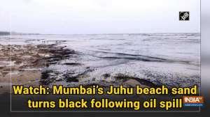 Watch: Mumbai's Juhu beach sand turns black following oil spill