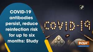 COVID-19 antibodies persist, reduce reinfection risk for up to six months: Study