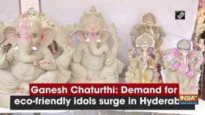Ganesh Chaturthi: Demand for eco-friendly idols surge in Hyderabad