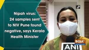 Nipah virus: 24 samples sent to NIV Pune found negative, says Kerala Health Minister